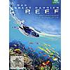 GREAT BARRIER REEF - DVD-VIDEO