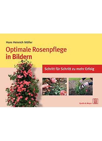 MÖLLER, OPTIMALE ROSENPFLEGE IN BILDERN