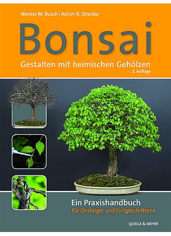 Bonsai gestalten mit heimischen geholzen garten nutz for Whirlpool garten mit bonsai samen shop