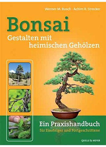 BONSAI BUSCH/STRECKER