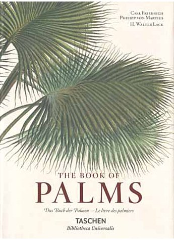 THE BOOK OF PALMS - FRIEDRICH/VON MARTIUS/LACK