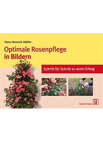OPTIMALE ROSENPFLEGE IN BILDERN - HANS HEINRICH MÖLLER