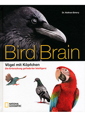 BIRD BRAIN - NATHAN EMERY