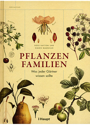 PFLANZENFAMILIEN - BAYTON/MAUGHAN