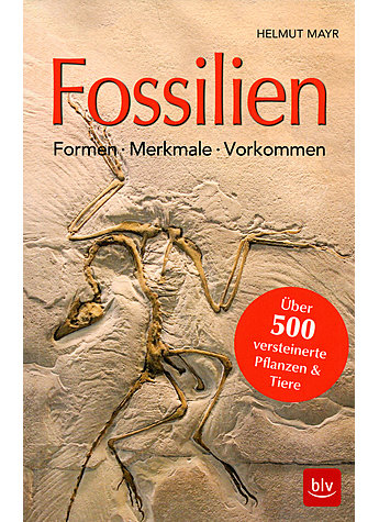 FOSSILIEN - HELMUT MAYR