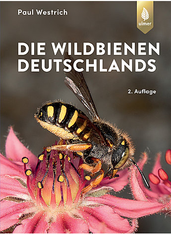 DIE WILDBIENEN DEUTSCHLANDS - PAUL WESTRICH