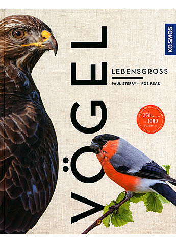 VÖGEL LEBENSGROSS - STERRY/READ