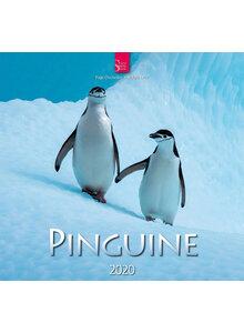 wandkalender pinguine 2020 kalender b cher humanitas. Black Bedroom Furniture Sets. Home Design Ideas