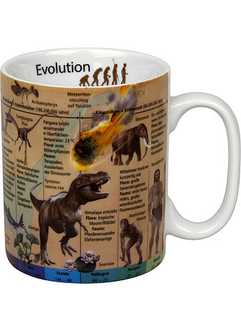 PORZELLAN-BECHER EVOLUTION